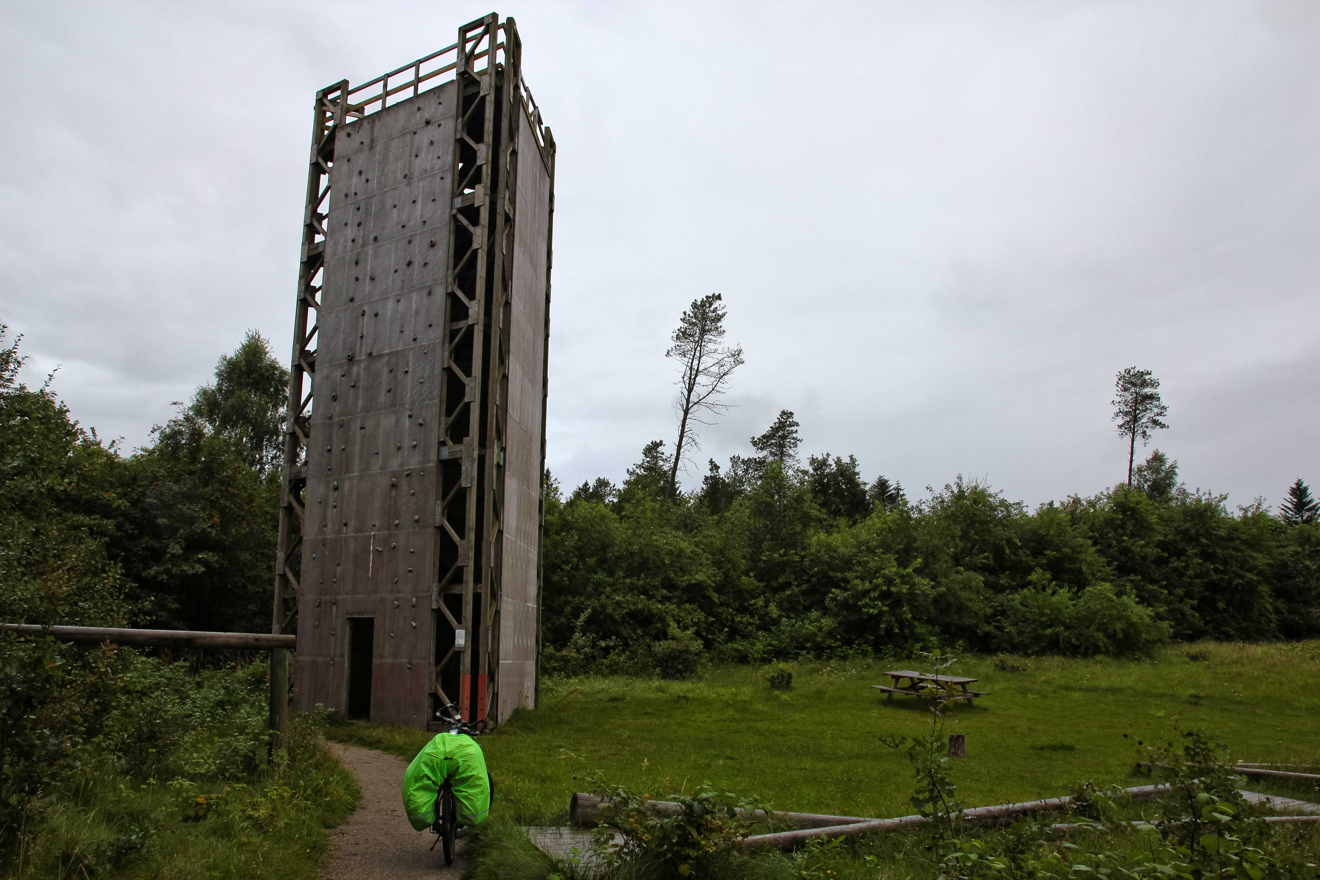 Climbing wall in the forest