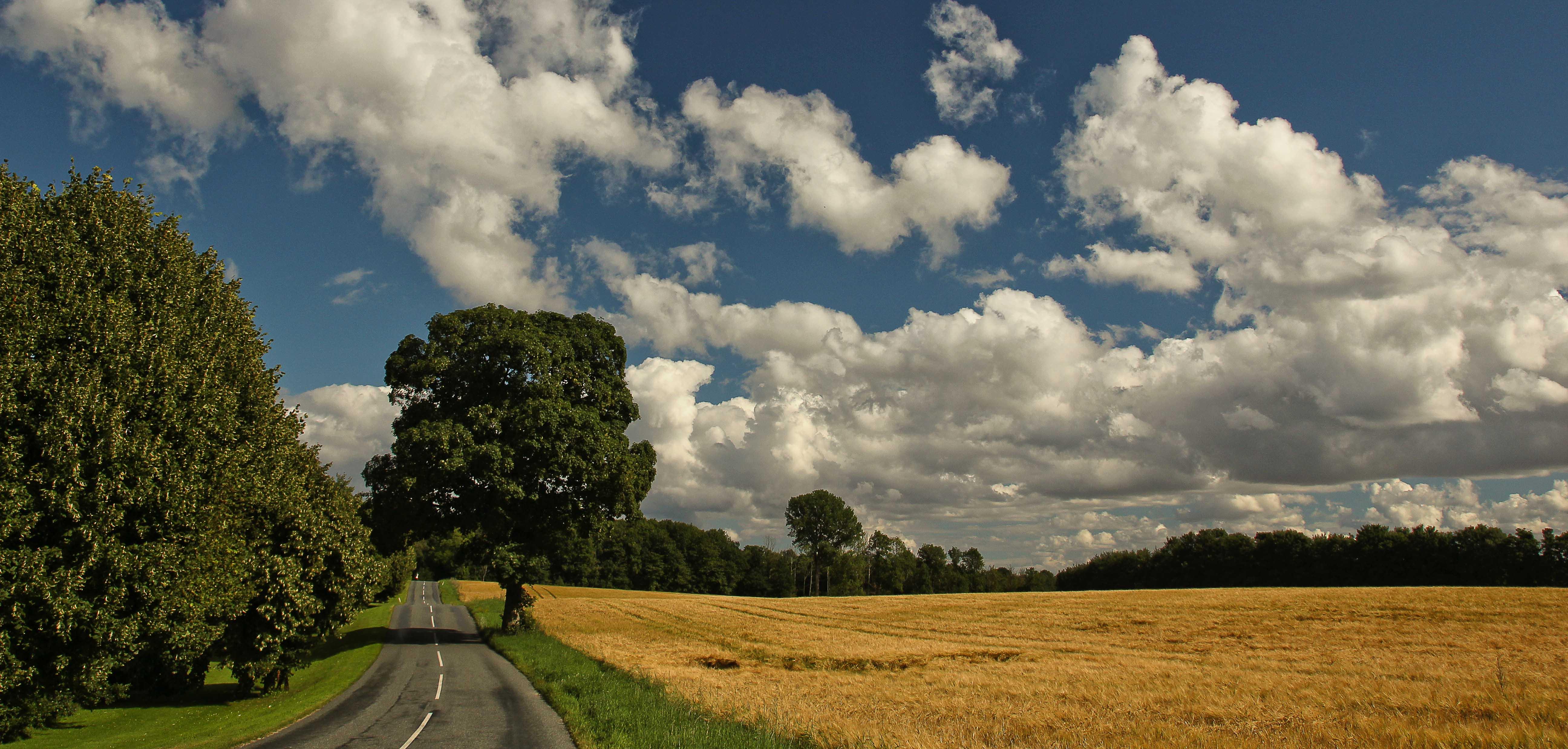 Zeland. Denmark